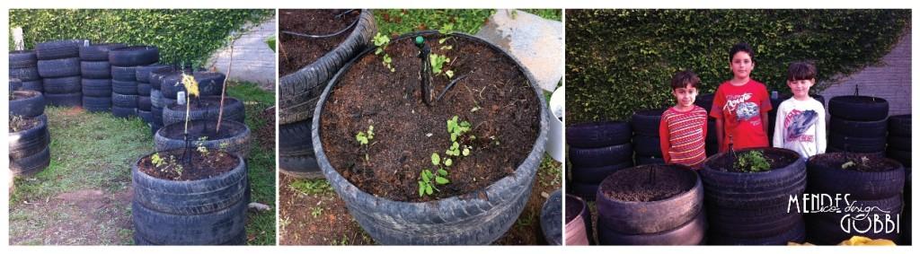 Início do plantio | Pequenos amigos dos arredores na horta